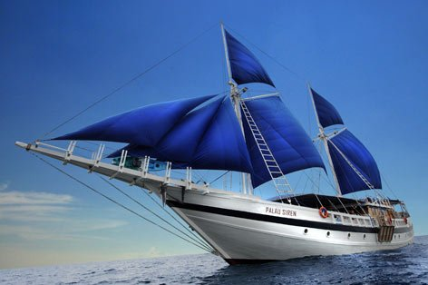The Palau Siren  Liveaboard scuba expeditions