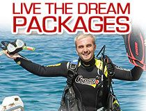 Learn to be an Instructor with PADI credentials